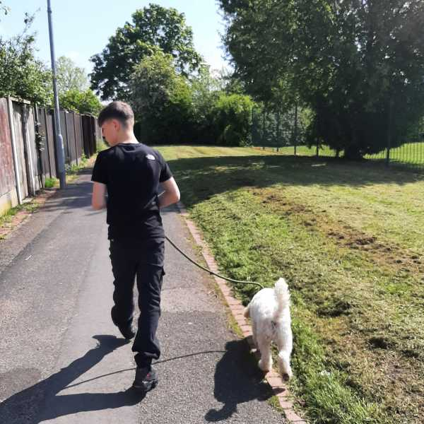 Henry The Therapoo with learners at Kassia Academy